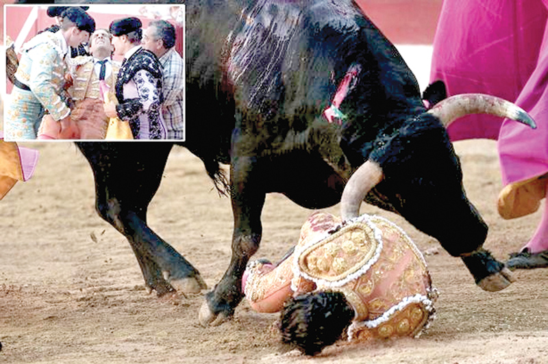 Matador Ivan Fandino was gored by the animal in southern France and (inset) he is helped out of the ring.