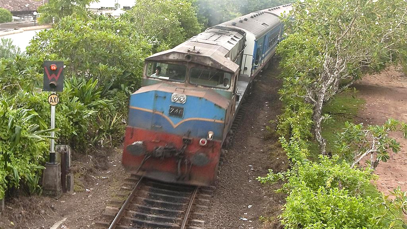 Office train stalls after hitting herd of cattle