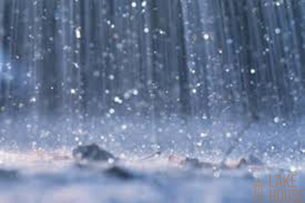 Showers expected today