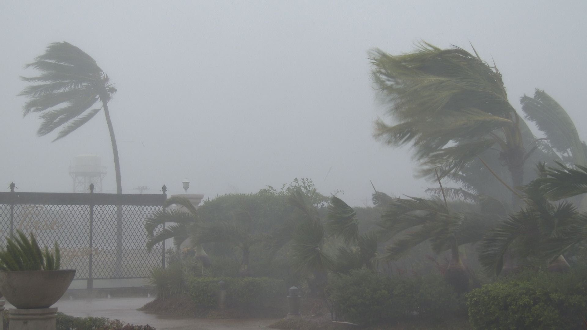 Showers and strong winds expected over the island