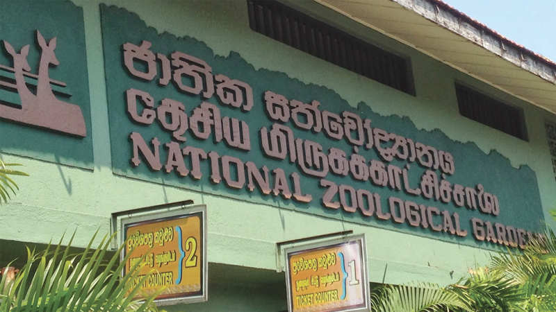 Int'l Children's Day: Zoological Gardens record more than 40,000 visitors
