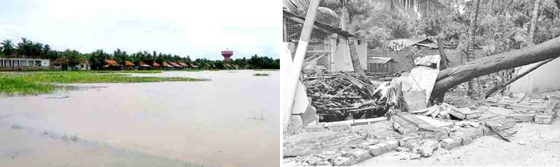 An inundated paddy field.-A damaged house.