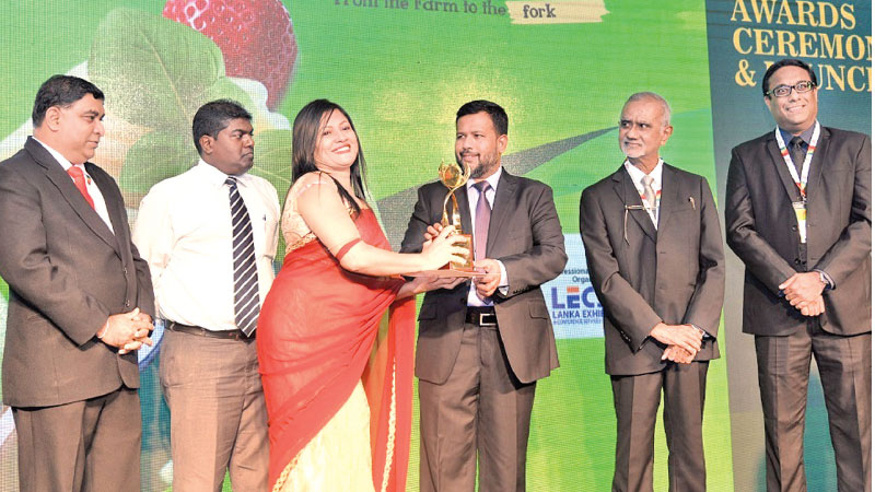 Nirmala Edirisinghe of Sunshine  Creations  and Foods  receiving her  award from Minister of Industr,y Commerce, Resettlement of Protracted Displaced Persons & Cooperative Development Rishad Bathiudeen.