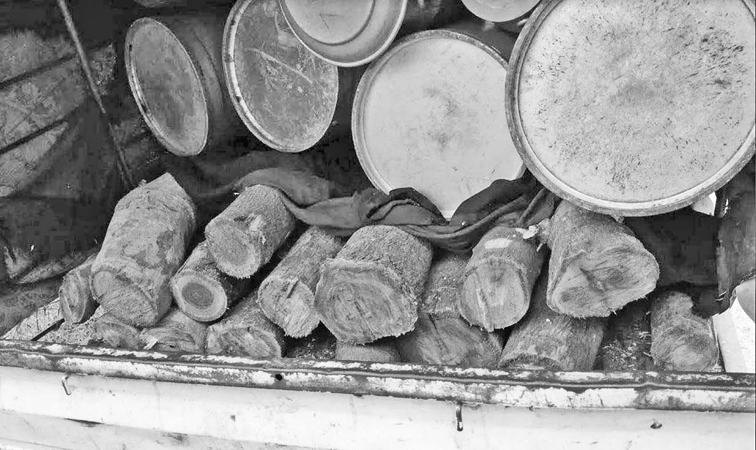 The seized teak logs and the lorry.