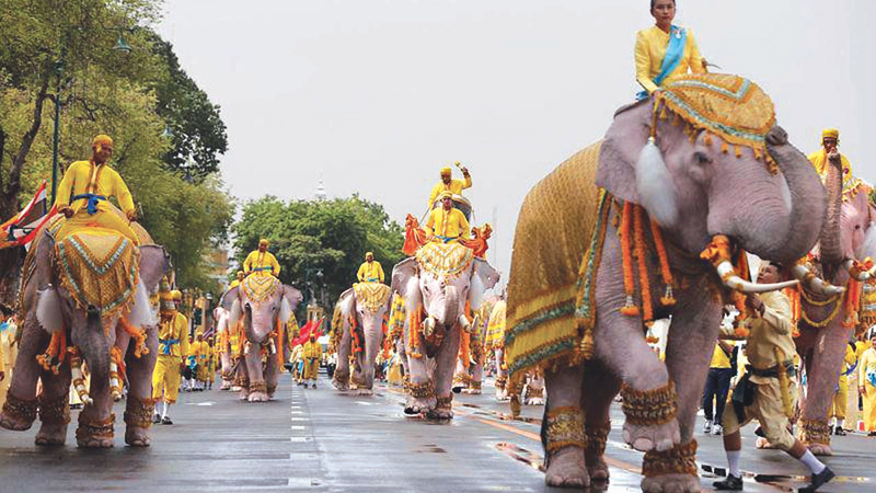 Eleven elephants from Ayutthaya camp march in procession near the Grand Palace to celebrate Thai King Maha Vajiralongkorn's coronation, in Bangkok on Tuesday.