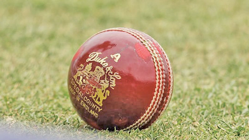 The Dukes ball is favoured by England's bowlers who found the 2018 design particularly productive.
