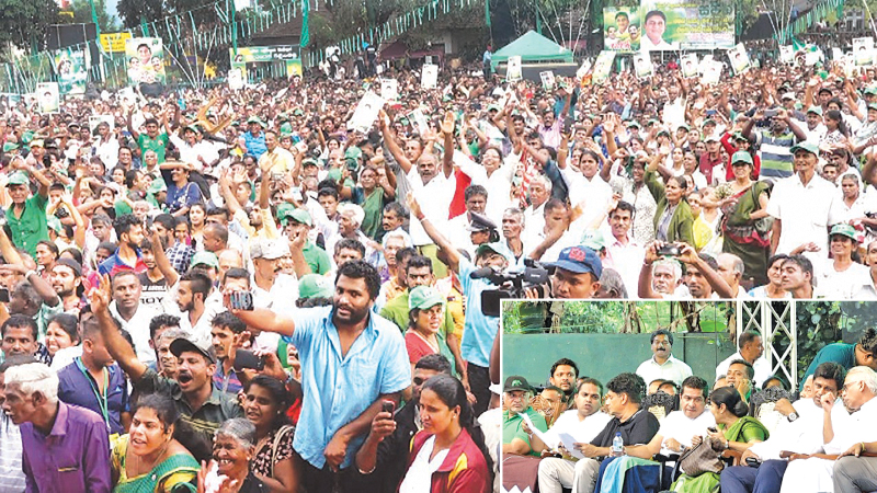 RISING POPULAR TIDE: A record massive crowd was there to cheer the younger generation UNP leadership at yesterday's public rally organised by the governing party at the Wills Stadium, Badulla. On stage were several government ministers of the younger generation. Pictures by Prasanna Padmasiri Bandara, Lunugala Correspondent