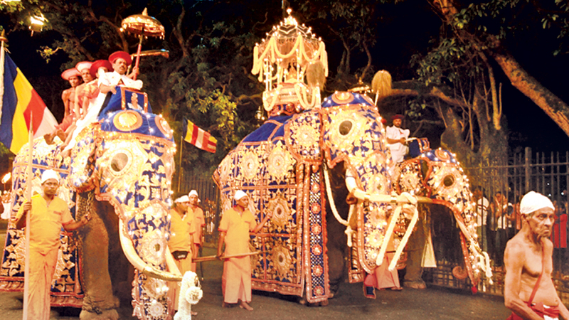 The third Kumbal Perahera of the historic Kandy Esala Festival paraded the streets of the city on Monday.   Pictures by Ruwan Meegammana