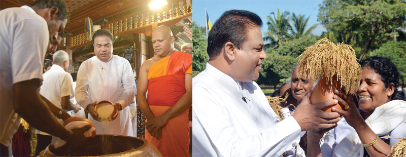 Agriculture, Rural Economic Affairs, Irrigation and Fisheries and Aquatic Resources Development Minister P. Harrison during the ceremony to offer the first portion of the Yala harvest to the Sacred tooth relic at the Sri Dalada Maligawa in Kandy on Thursday.