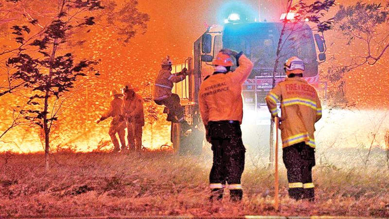 Firefighters hose down trees as they battle against bushfires around the town of Nowra in the Australian state of New South Wales.