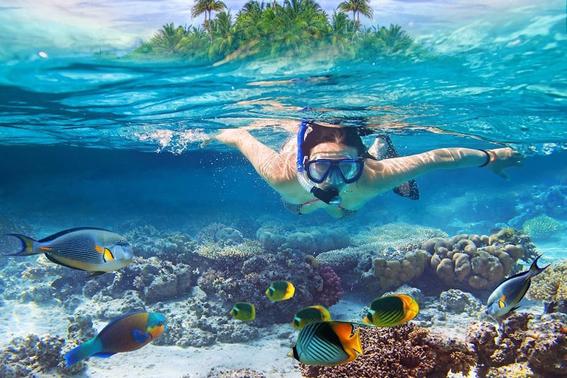 Snorkeling in the Maldives.