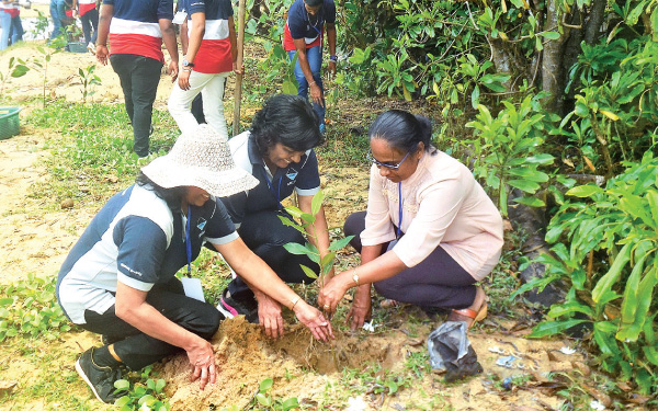 MEPA officials and Provincial Deputy Manager R.P.  Renuka planting shrubs near the Gin Ganga estuary.  Picture by Mahinda P. Liyanage – Galle Central Special Corr.