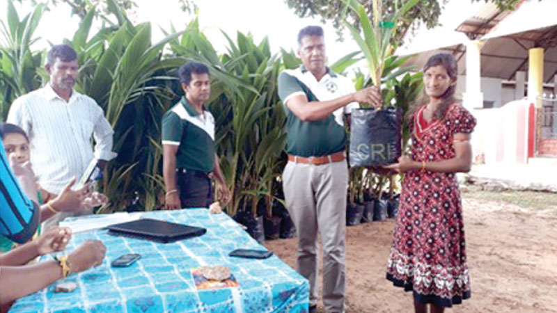 A few pictures from their coconut seedling distribution programme.