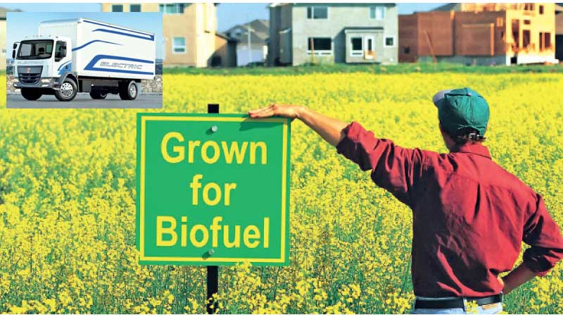 There will be an emphasis on electric vehicles and biofuels