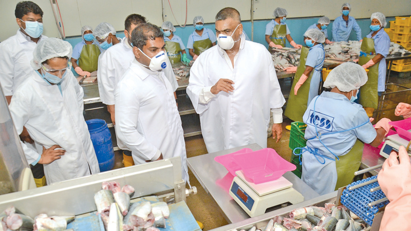 State Minister Kanchana Wijesekara inspecting the production line at TESS Cannery in Peliyagoda last week. Pictures by Wimal Karunathilaka.