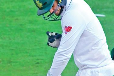 South African wicket-keeper Quinton de Kock is stung by a bee.