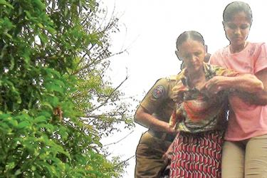 The woman being escorted down from the roof by policewomen.
