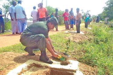 A soldier plants a sapling in Kilinochchi to mark World Environment Day.