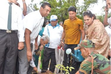 Mayor Rosy Senanayake plants a tree at the Viharamahadevi park.