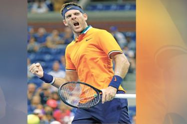 Argentina's Juan Martin del Potro celebrates after defeating Croatia's Borna Coric during their men's singles tennis match Day 7 of the 2018 US Open at the USTA Billie Jean King National Tennis Center on September 2, in New York City. / AFP