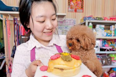 A dog gazes at a pet birthday cake on display in Changchun, Northeast China's Jilin province, April 13, 2015.