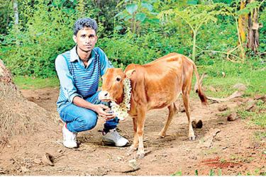 Manikyam with his owner