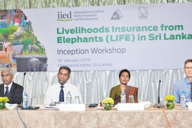 Officials from IPS and Institute for Environment and Development officials at the event