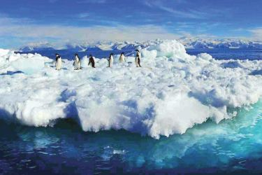 New research shows Antarctic glaciers have been melting at an accelerating pace.