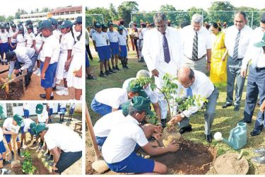 Commercial Bank Chairman Dharma Dheerasinghe, Chief Operating Officer Sanath Manatunge, Deputy General Manager Marketing Hasrath Munasinghe and officials of the Bank's CSR Trust participate in a tree planting program at President's College, Kotte and students and Bank officials planting trees at other schools around the country where the programme took place.