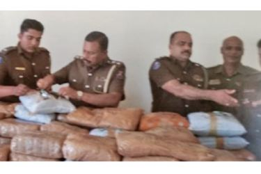 Kankesanthurai Police Officers inspect the seized haul of cannabis.