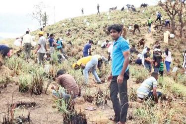 The tree planting campaign at Ella Rock yesterday.  Picture byPrasanna Pathmasiri  Uva Provincial Group Corr.
