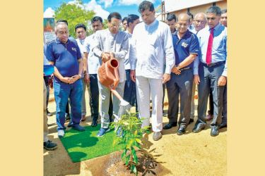 """Maithripala Sirisena, the President of the Democratic Socialist Republic of Sri Lanka at the """"BOC Haritha Arana"""", the Bank's 80th Anniversary tree planting project inauguration ceremony with the participation of State Minister of Mahaweli Development and Environment Ajith Mannapperuma, the Chairman, Bank of Ceylon, President's Counsel Mr. Ronald C. Perera and the Acting General Manager Russel Fonseka."""