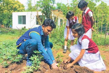 A Lion member planting a sapling at a school.