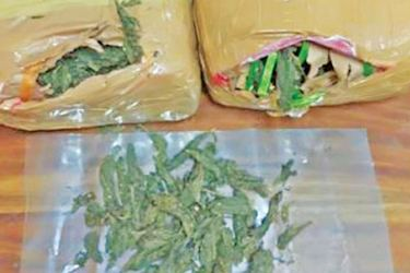 The haul of Kerala cannabis that was seized.