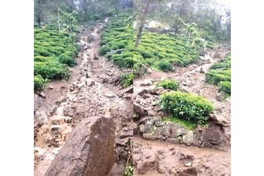 Landslides in the Madolsima Estate. Pictures by N. Nawaratne, Meegahakiula Group Corr.