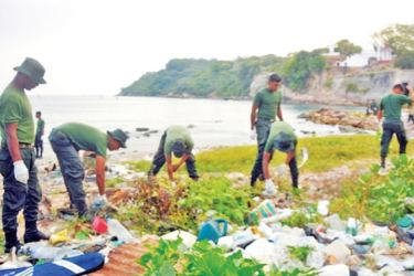 The beach clean-up in progress.