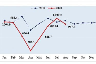Monthly Export Performance 2019, January-August 2020