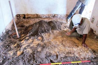 A researcher examines the excavated stratum of coal. Pictures by Mahinda P. Liyanage, Galle Central Special Corr.