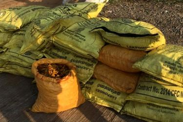 Some of the bags containing turmeric. Picture by Navy Media.