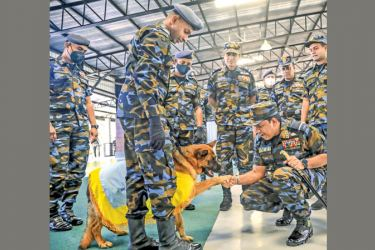 Air Force Commander Air Marshal Sudharshana Pathirana greeted by the German Shepherd 'Kyra' during his interaction with the dogs after the ceremony. Picture by Gayan Pushpika.