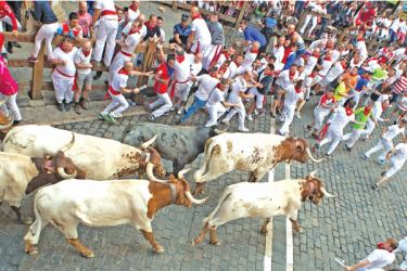 Spain's best-known bull-running festival held in the northern city of Pamplona is to be cancelled for the second year in a row because of the pandemic. - AFP
