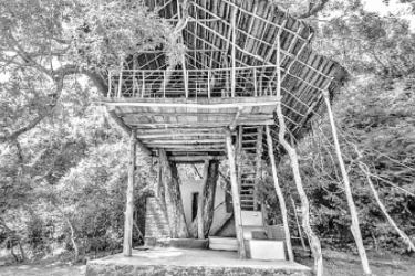 A tree house at Back of Beyond