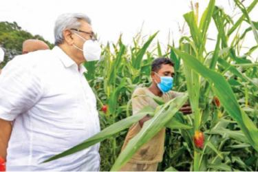 President Gotabaya Rajapaksa talks to a farmer at one of his meetings with villagers.