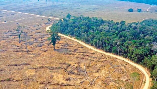 Aerial view of burnt areas of the Amazon rainforest, near Porto Velho, Rondonia state, Brazil on Saturday. - AFP