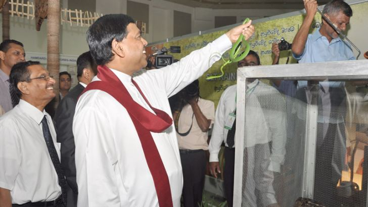 Economic Development Minister Basil Rajapaksa who graced the 'Ayurveda Expo 2013' International Indigenous Healthcare Exhibition which started at the BMICH yesterday is seen holding up a reptile for a good view. The exhibition which is organised by the National Chamber of Commerce will conclude on July 14. Pcture by Thushara Fernando