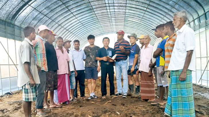 Korea Program on International Agriculture Centre Director Dr. Byoung Choon Jang with the onion cultivators