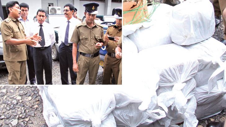 Excise officials led by Commissioner General L.K.G.Gunawardena examining the cannabis haul. Picture by Rukmal Gamage