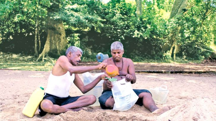 Two Kataragama Pada Yathra pilgrims from the North collecting drinking water after digging a water hole in the bed of the Kubukkan Oya as the water flowing down the canal is not fit for human consumption. Picture by Sulochana Gamage