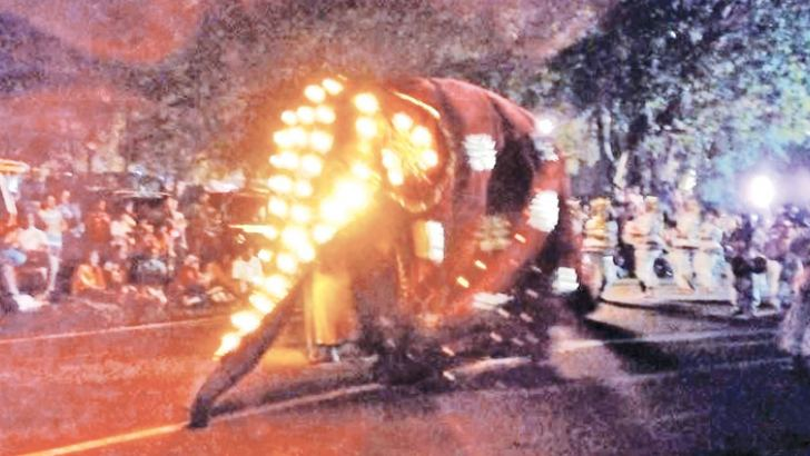 The perahera in progress.  Picture by Ajith Gangoda, Udadumbara Group Corr.