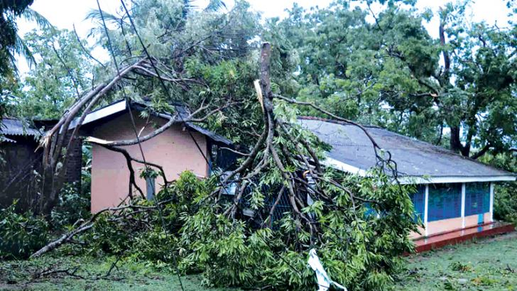 Two damaged houses. Pictures by Amila Prabath Wanasinghe